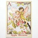 フラワーフェアリーズ ポストカード The Apple Blossom Fairies フラワーフェアリーズ ポストカード 花の妖精たち 絵葉書 リンゴの花の妖精