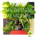 【midorie/自分で作るミドリエ♪】マイデザイン・マイミドリエ/全4色【壁掛け観葉植物】