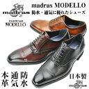 madras MODELLO マドラス日本製 マドラス モデロ 本革 防水/通気/機能 モデルメンズビジネスシューズ madrasMODELLO DM347