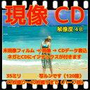 カラーフィルム現像 CD書込(画像が荒い4Bデータ保存) インデックス 35ミリフィルム、写ルンです レンズ付きフィルム、(APS ハーフは別出品) フジカラー