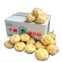 北海道産 ゆり根 5〜15玉入 約1kg 1箱