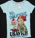Usavich504-087-1