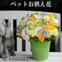 アレンジメント 花 ギフト フラワー アレンジ あす楽 犬