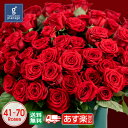 【本数指定可】赤バラ41〜70本 プリ花