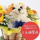 母の日に!【送料無料】三毛ネコちゃんのアニマルフラワーアレンジメントまるでぬいぐるみみたい☆ふわふわでキュンとしちゃう♪かわいい生花カーネーションギフト