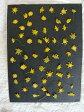 【S-69】ゴールデンクラッカー55枚【飛騨】【山野草の押し花】【押し花パック】【押し花素材】【手作り】【キット】