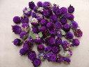 【一袋でリース1つ作れます♪】飛騨産天然素材ドライフラワー 千日紅(紫)約15グラム(約50個)