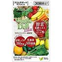 【メール便OK】ベジーデルヴィータラクトジンジャー酵素粒プラス/酵素 サプリメント ダイエット 美容 健康 スリム サポート