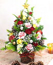 クリスマス・ツリー【◎楽天1位!】【クリスマス◎】【あす楽◎】12/1から12/25お届け 花 ギフ
