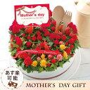 【あす楽】母の日 ケイトウケーキ花鉢7号鉢 【母の日おすすめ...