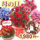 母の日 プレゼント ギフト 選べる花鉢&リースカーネーション...