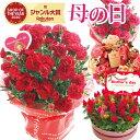 \まだ間に合う/母の日 プレゼント 花 ギフト 選べる花鉢&リース母の月 カーネーション アジサイ ケイトウ リース…