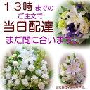花 お悔やみ・お供え・葬儀・法事・枕花/命日/ペットのお供え...