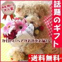 花 ギフト/フラワー★プレゼントベア★ワイルドストロベリーベ...