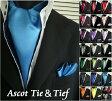 アスコットタイ ポケットチーフ 2点セット 25COLOR★ 2点セットでこの価格! 結婚式 ネクタイ necktie