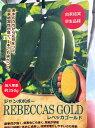 ジャンボポポーの苗 各種 5号ポット 【自家結実 早生品種】 若木のうちから花芽をつけ、自家結実性が高く1本でも実をつけます♪レベッカゴールド マンゴー サンフラワー プロリフィック ミッチェル NC1