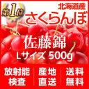 【100円引き】【順次出荷中!】北海道産さくらんぼ「佐藤錦」...