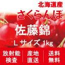 【200円引き】【順次出荷中!】北海道産さくらんぼ「佐藤錦」...