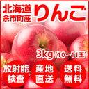 【今だけ100円引き】北海道余市産 りんご 3kg【放射能検査済】【送料無料】