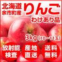 【今だけ100円引き】北海道余市産 りんご 3kg(わけあり品)【放射能検査済】【送料無料】