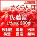 Sato_banner