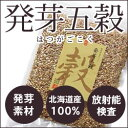 【放射能検査済】北海道産 発芽五穀 300g