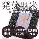 【放射能検査済】北海道産 発芽黒米 300g