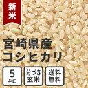 New_miyazaki_g_5kg
