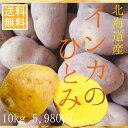 【超希少】北海道産インカのひとみ(10kg)【送料無料】