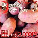 【送料無料】訳あり北海道産じゃがいもレッドムーン(5kg)