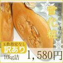 【訳あり】かぼちゃ「雪化粧」(約10kg)玉数指定無し※今年は品薄の為10K2280円