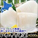 北海道産のいかを使ったイカソーメン約500g(10柵)(冷凍)