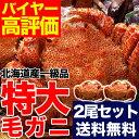 豪華特大毛ガニ約570g2尾セット(合計約1.1kg)【送料...
