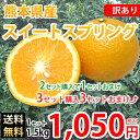 スイートスプリング みかん 送料無料 訳あり 1.5kg S〜3L 熊本県産 2セットで1セットおまけ 3セットで3セットおまけ 蜜柑 温州みかん 八朔