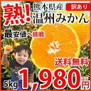 みかん 送料無料 訳あり 温州みかん 5kg L〜3L 熊本...