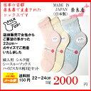 シースルーソックス 日本製 ハイビスカス柄22-24cm 3足セット(3セットの中からお選びください)