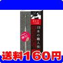 [ネコポスで送料160円]関の刃物 直形状記憶合金耳かき SK-05