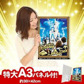 東京ディズニーランドorシーペアパスポートチケットA3パネル付き★送料無料★