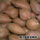 【数量限定特価】【28年種子島産 小玉 】しっとり甘〜い天然スイ〜ツ安納芋 5kg Sサイズ(60〜120g)
