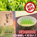 【鹿児島産】知覧のお茶(1000円茶3本)【532P17Sep16】