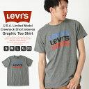 【全品対象】割引クーポン配布   リーバイス Tシャツ 半袖 メンズ 大きいサイズ USAモデル ブランド Levi's Levis 半袖Tシャツ ロゴT アメカジ カジュアル