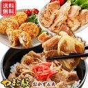 生姜焼き メンチカツ 豚丼の具 惣菜セット NS-F | 送