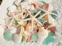 楽天FRITZ MART 楽天市場店天然素材 A品 ヒトデ 4P 白い 貝殻 シーグラス セット 500gBIGパック ハワイインテリア ブライダルディスプレイ 手作り素材 クラフト工作材料 マリン雑貨