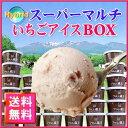 【送料無料】フロム蔵王 ◆徳用◆HybridスーパーマルチいちごアイスBOX24【アイスクリーム】