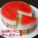 フロム蔵王 山元町いちご畑チーズケーキ4号