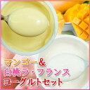 【送料無料】マンゴーと白桃&ラフランスヨーグルトの40個セット