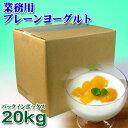 【業務用】フロム蔵王 プレーンヨーグルト(バッグ・イン・ボックス)10kg×2箱(20kg