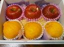 デコポン&糖度14度以上蜜入り賢治りんごのセット 3玉ずつ 5,000円【送料無料&税込み】(ギ