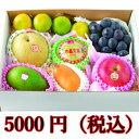 旬の果物箱盛り合わせ 5000円【送料無料】(ギフト/御中元...