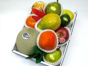 フルーツ 盛り合わせ